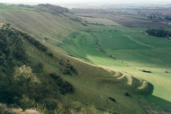 Bratton Castle/Westbury White Horse