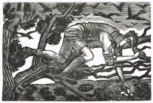 Wood engraving of a boy reaching into a nest and holding one of the eggs.
